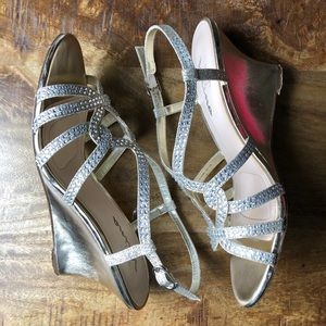 Gold & Silver Wedges